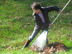 Our Canton Chiropractors see raking leaves cause back pain