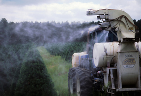 Our canton chiropractors recommend limiting pesticide exposure